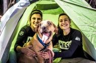 Moradores de rua e seus Cães – Mais um dia de fazer obem