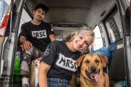 Moradores de rua e seus Cães – Ultima ação doano…