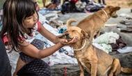 Moradores de rua e seus Cães – Ação Aldeia BoaVista